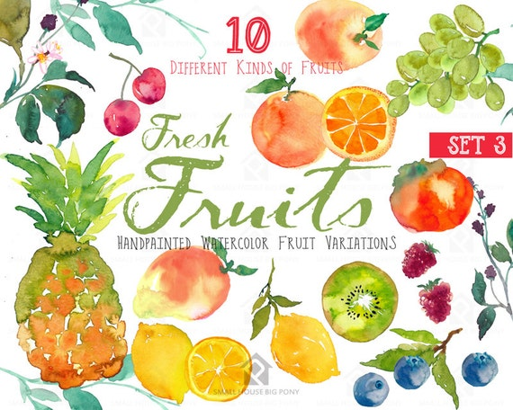 Fruits watercolor clipart - Watercolor Fruit, Clip Art, instant download, fruit clipart, fruit, watercolor fruit- Fresh Fruits (Set 3)