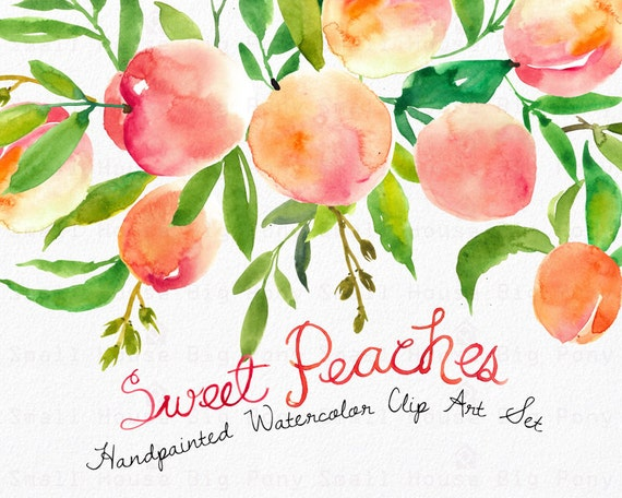 Watercolour Clipart Set. Handmade, watercolour clipart, summer, wedding diy elements, fruit - Sweet Peaches