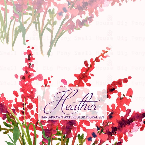 Watercolour Floral Clipart: Scot Heather Sprigs, Wreath,  floral, Watercolour Clip Art/Heather/Individual PNG files/Hand Painted-Heather