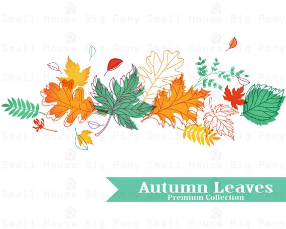 Autumn Clip art, Clipart Leaves Set, room poster, autumn season leaves decor, digital art- 19 PNG files included