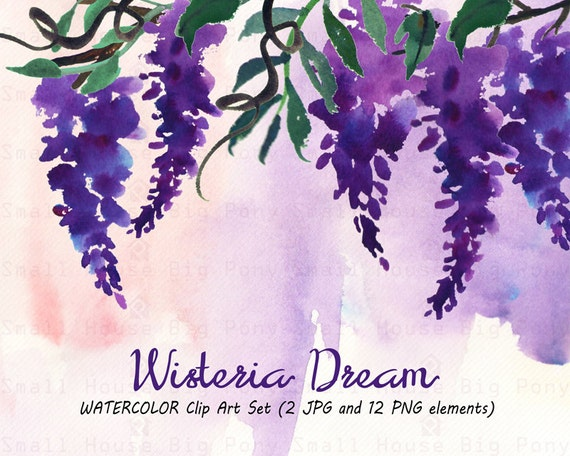 Watercolour Floral Clipart: 12 PNG separate elements. Handmade, watercolour clipart, wedding diy elements, flowers - Wisteria Dream