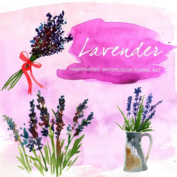 Lavender Watercolor clip art hand drawn. Romantic wedding, purple, violet purple flowers tender, wedding invitations