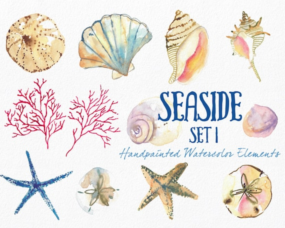 Watercolor Sea Shells Clipart, Instant Digital Download, Hand-Painted Ocean, Beach, and Nature Graphics-  Seaside Part 1