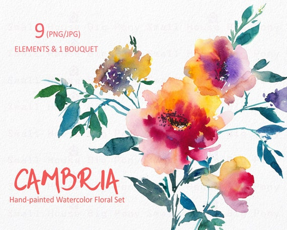 Watercolour Floral Clipart. Handmade, watercolour clipart, wedding diy elements, flowers - Cambria