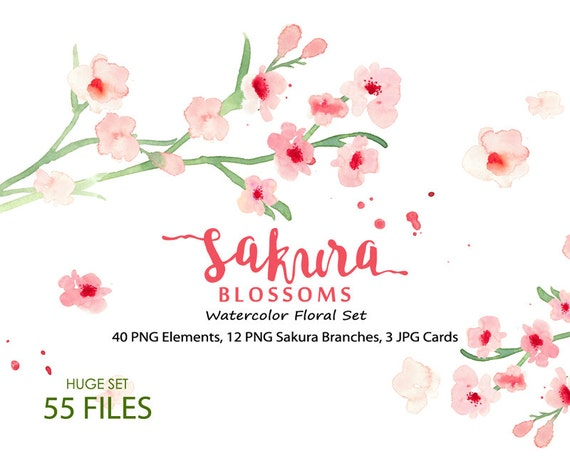 Watercolour Floral Clipart. Handmade, watercolour clipart, wedding diy elements, flowers - Cherry Blossoms- Sakura