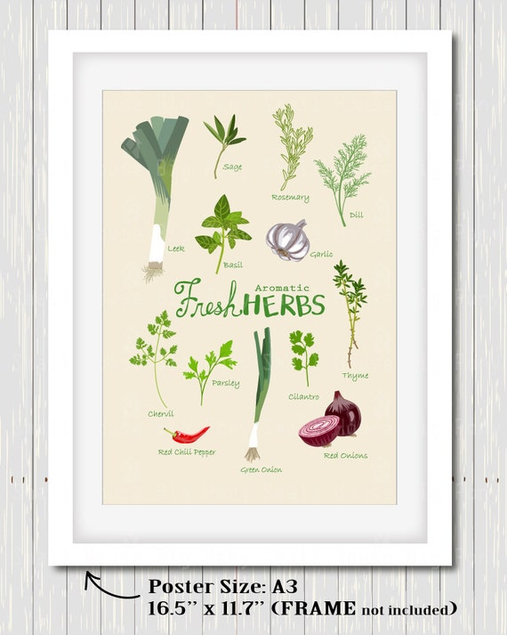 Fresh Herbs Clip art, Clipart , Kitchen print set,  kitchen poster, kitchen decor, art for kitchen, wall art, digital art- Ready to Print