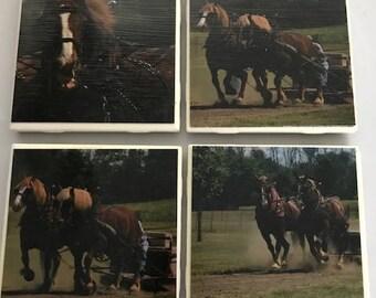 Handmade Draft Horse Set of 4 Photo Coasters