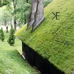 The Moss House | Bran, Braşov, Romania ~ Moss Roof, Log Cabin, Nature, Green, Unique Architecture, Romania, Bran, Hut, Green Rooftop, Grass