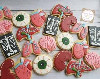Organ/body sugar cookies (60 cookies)