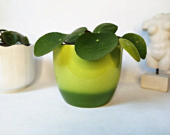 """Plant pot / Planter made of Ceramics / green planter, 4"""""""