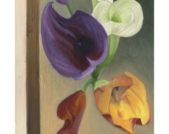 Calla Lilies Giclee Print
