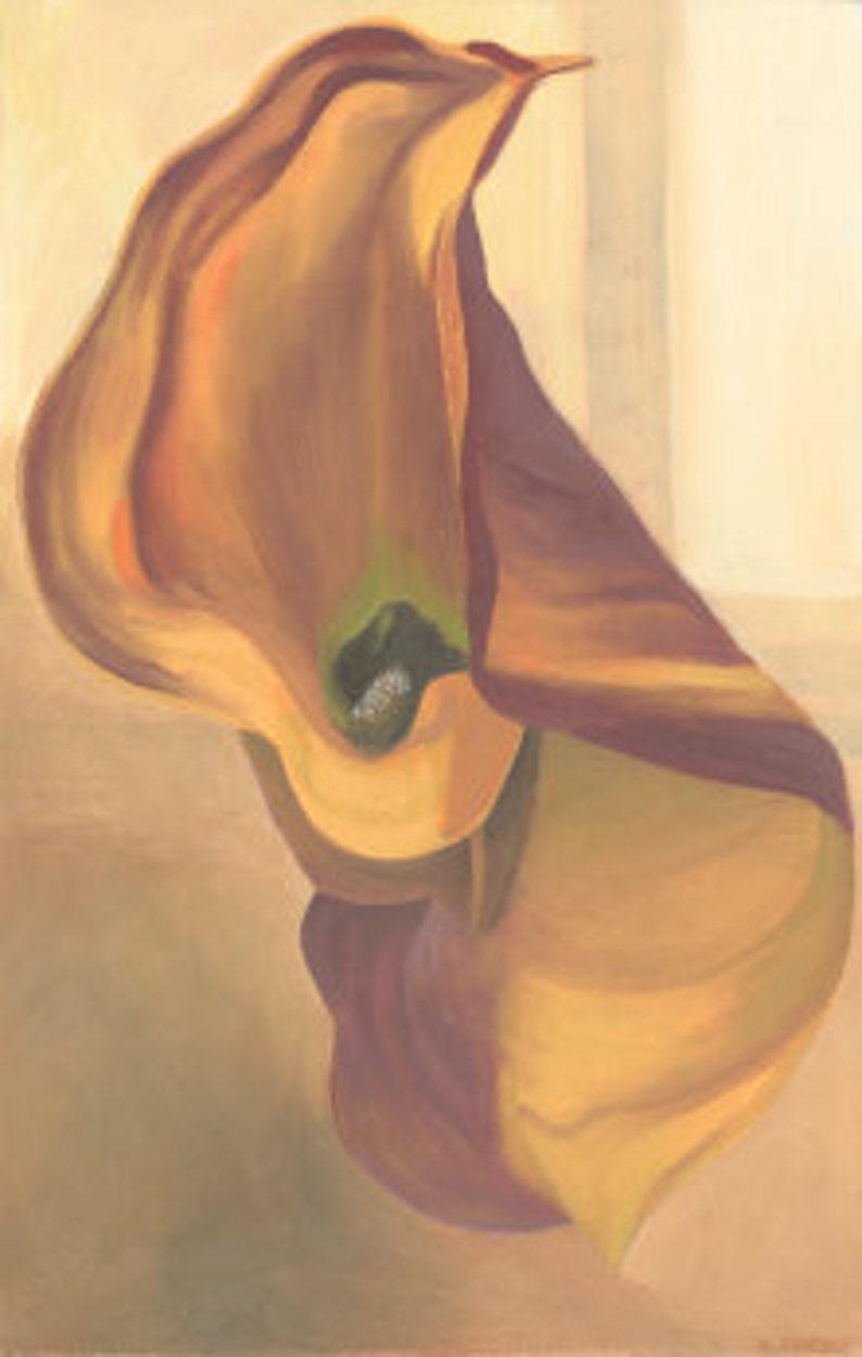 Orange Calla Lily image 0