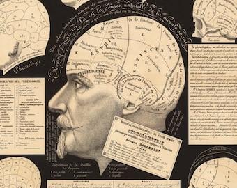 Phrenology Head Vintage Art Print - Organographie Du Crane Humain - Cephalometry Psychology Chart - French Anatomy Medical Ephemera