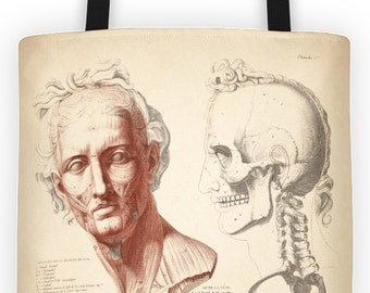 Art Print Tote Bag - Anatomy of the Head and Skull Antique Print - Large Market Tote - Reusable Grocery Bag - Vintage Carry All Beach Bag