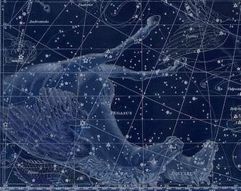 Vintage Pegasus Equuleus Constellation Celestial Map - Astronomy Gift - Astrology Art - Zodiac Sign Star Chart - Restoration Style Decor
