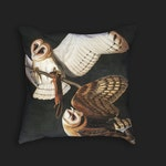 Decorative Pillow - Audubon Barn Owl Antique Print Throw Pillow - Home Decor Accent Pillows - Vintage Avian Bird Art - Ornithology Study Art