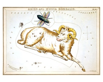 Aries Vintage Zodiac Astrological Art Print - Astronomy Astrology Horoscope Art - Celestial Constellation Chart - Old Maps and Prints