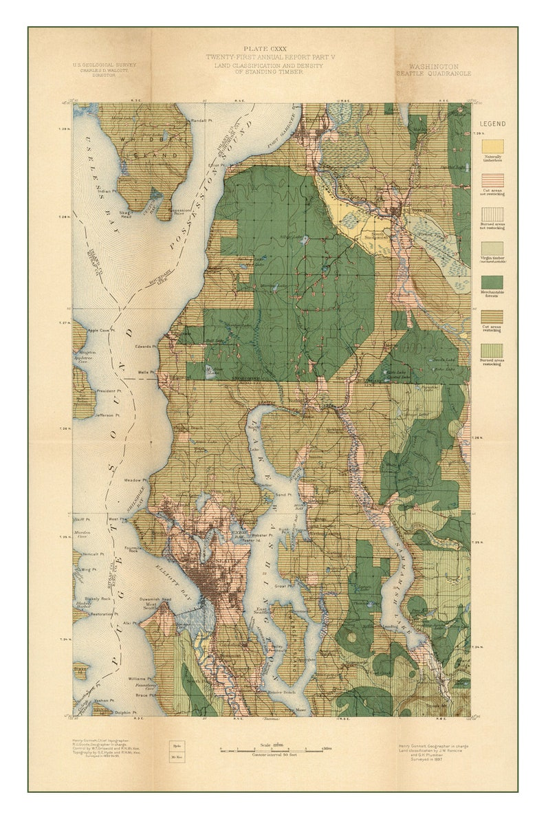 1900 Geologic Survey Map of Seattle Land Use and Timber  Old image 0