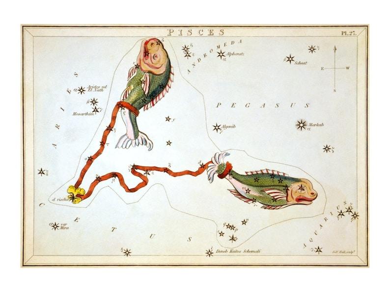 Pisces Vintage Zodiac Astrological Art Print  Astronomy image 0