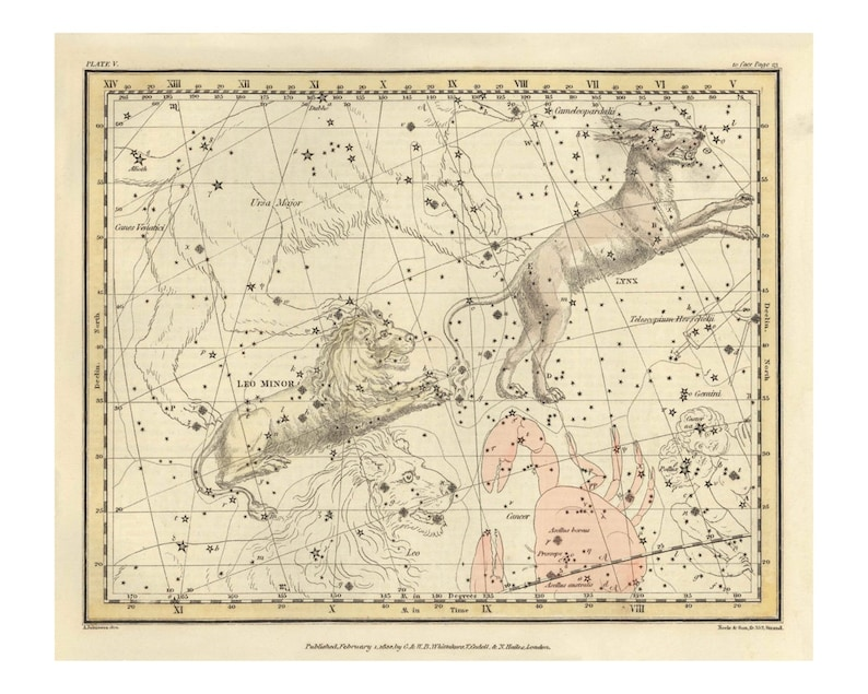 Vintage Lynx and Leo Minor Constellation Celestial Map  image 0