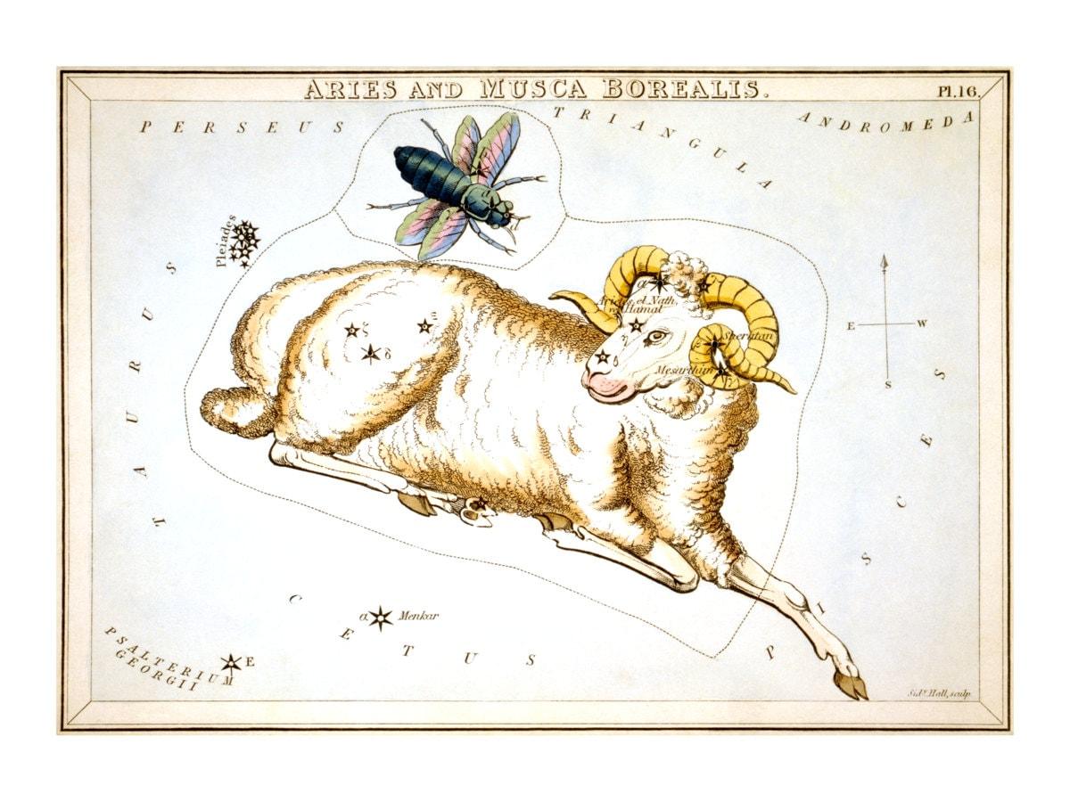 Jessica Adams: Psychic Astrologer. Astrology & Horoscopes