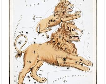Leo Major Vintage Zodiac Sign Art Print