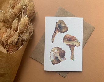 Chanterelle mushroom cottage core greetings card - eco friendly stationery - green witch