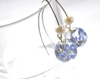 Real Forget-me-not, Real Petals V-Hook Earrings, with Freshwater Pearls, 14K gold filled