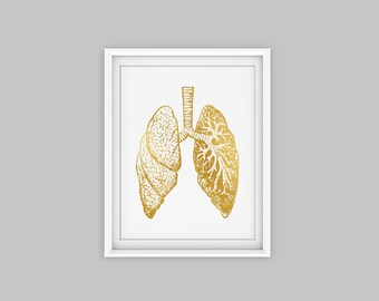Lungs art print, gold anatomy art, anatomy print, anatomy poster, anatomy poster, anatomy decor, human  anatomy art, human anatomy print