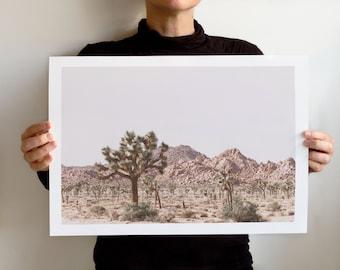 Joshua Tree National Park Art Print - Wall Home Decor - Landscape California - Dry Land No 5901 Coll,