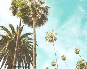 Palm Tree Print, Photography Print, Bedroom Decor, Palm Tree Wall Art, Picture, Beach Wall Decor, Coastal Decor, Horizontal California Photo