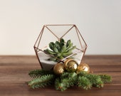 Glass Terrarium | Holiday Decor | Modern Planter | Geometric Wedding Centerpiece | Succulent Terrarium | Wedding Gift | Cactus Terrarium