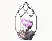 Glass Geometric Terrarium Container, Orchid Planter, Stained Glass Decor, Wedding Card Box
