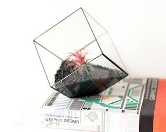 Geometric Terrarium, Plant Lovers Gift, Coworker Gift, Minimalist Planter, Stained Glass Succulent Terrarium, Boyfriend Gift, Gardening Gift
