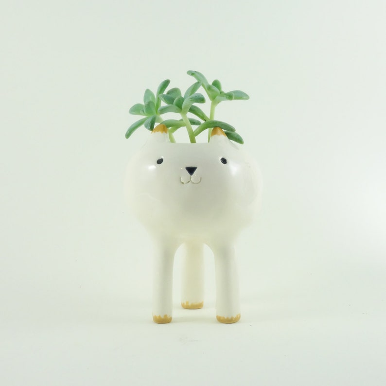 Tiny Cat Planter Desktop Planter White Pottery Plant Pot image 0