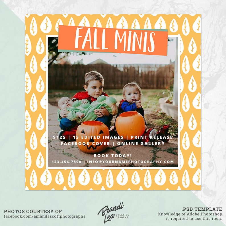 Fall Mini Session Marketing Board, Fall Minis, Facebook Cover, Photoshop  template, INSTANT DOWNLOAD, Photographer Marketing, PSD, MS122