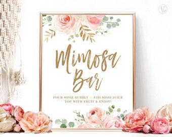 Blush Pink Floral Mimosa Bar Sign, Printable Mimosa Bar Sign, Bridal Shower Mimosa Bar Sign, Floral, Gold, VWC95
