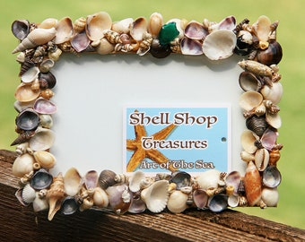 Sea Shell Shadow BoxMaine Mussel Shells With Native Maine Moss