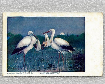 postcard illustration tinedegroote birth, stork, carrier bag