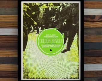 Colour Revolt Screen Printed Poster