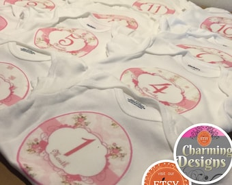 1-12 months PINK Rose Themed Milestone Onesies for first Twelve Months, Roses Baby Shower Gift - Keepsake, by Charming Designs