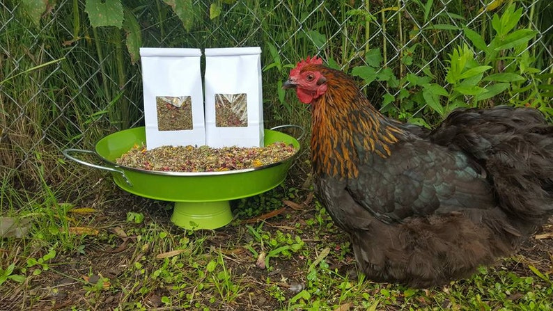 Organic Herbs Chicken Supplies Chicken Coop Chicken Lover Backyard Farmer Gift Nesting Box Herbs -4 oz- Dried Herbs Chicken Gift