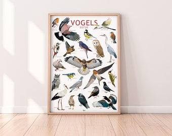 Poster 'Birds in the yard'