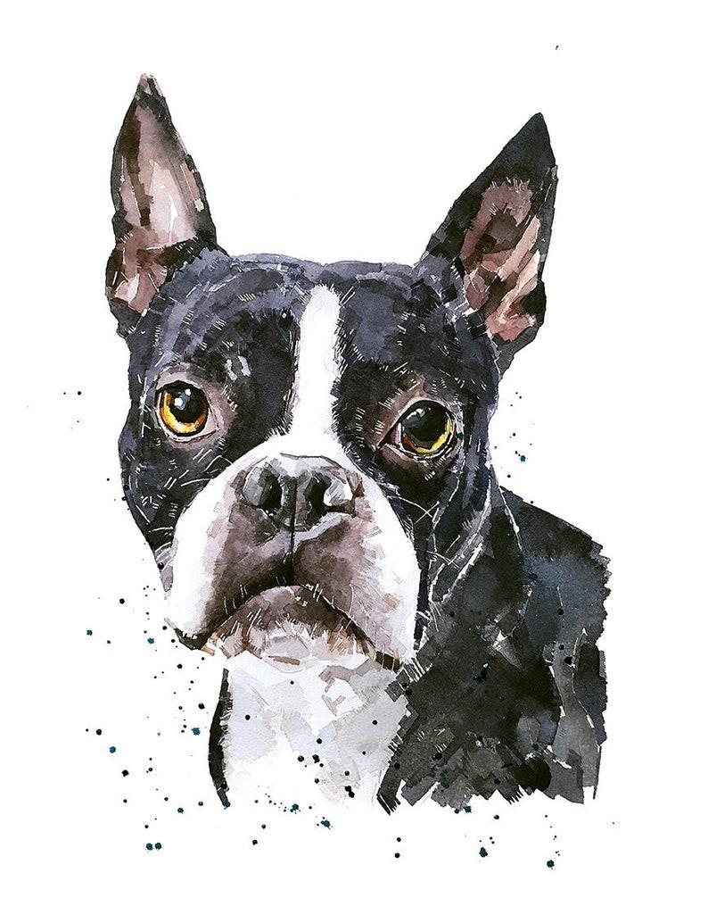 Boston Terrier  Print Watercolour