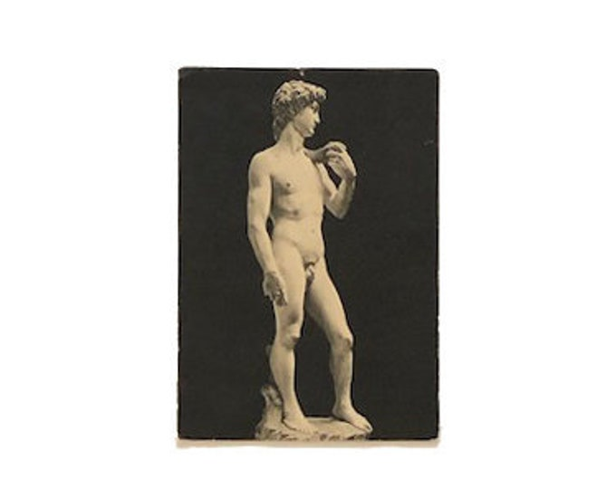 Vintage Michelangelo David Photo Postcard