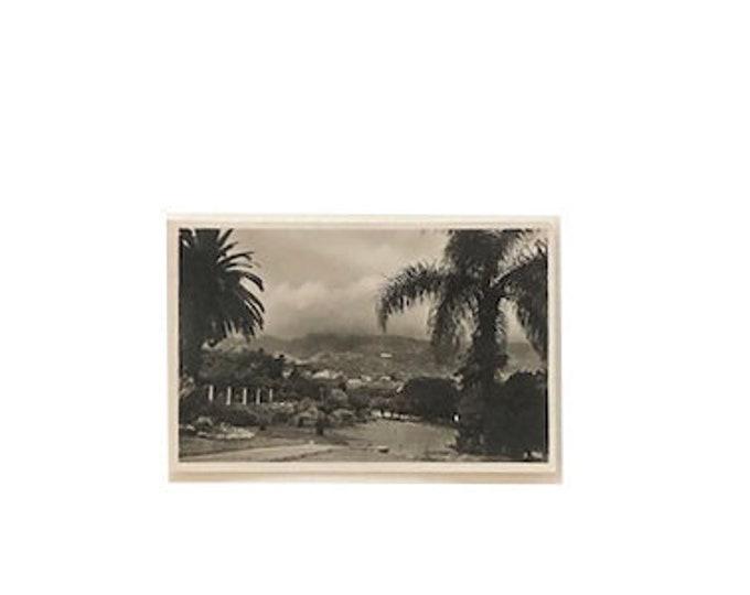 Vintage Madeira Portuguese Portugal  Golfcourse Postcard