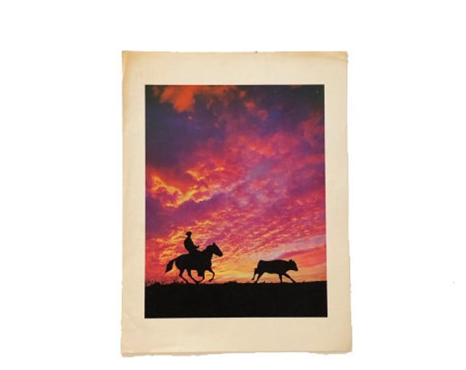 Vintage Cowboy Roping at Sunset Photo Print