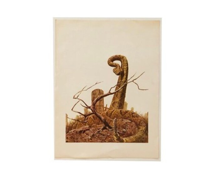 1970's Western Print with Rattlesnake