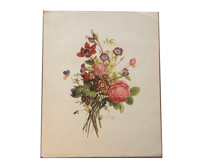 Antique J. L. Prevost Botanical Print