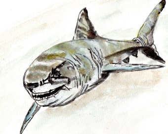 Great White Shark print from my original painting.  Jaws inspired by Shark Week.  Not Original